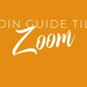 Zoom – sådan bruger du det